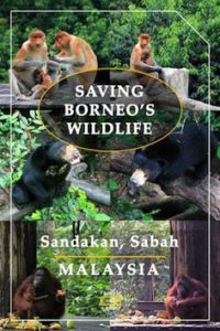 borneo travel packages